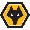 Wolves FC250